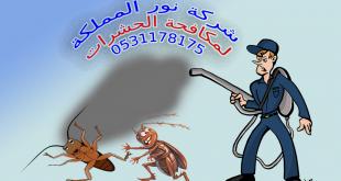 شركة رش مبيدات بجازان _ نور المملكة