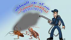 شركة مكافحة حشرات بجازان 0531178175
