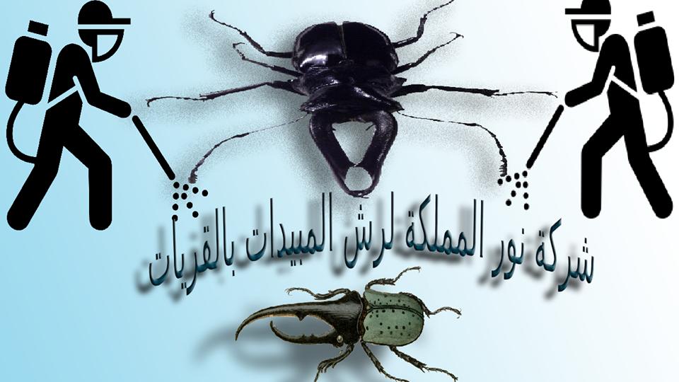 شركة مكافحة حشرات بالقريات
