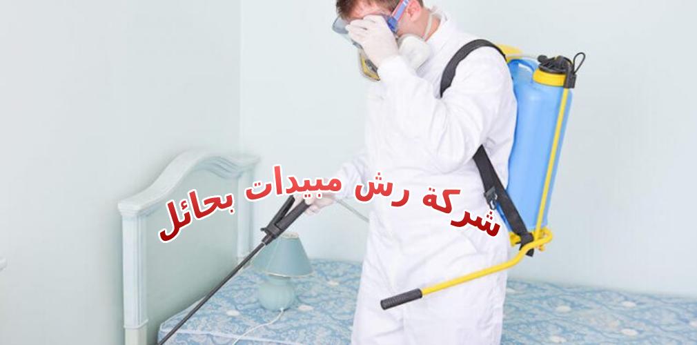 شركة رش مبيدات بحائل 0531178175